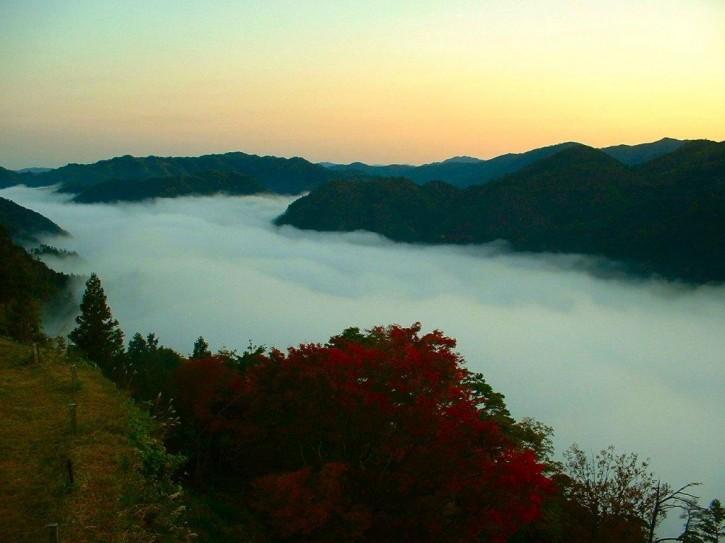 朝霧1(津和野町)